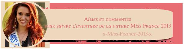 ღ Miss France 2014 est Miss Orléanais 2013. . . ღ