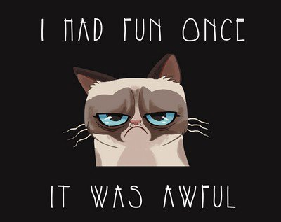 Grumpy cat, le film