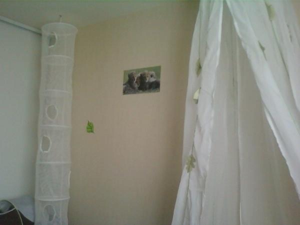 son ciel de lit et son filet a joujoux blog de future maman et papa. Black Bedroom Furniture Sets. Home Design Ideas