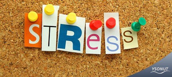 #Spéciale rentrée scolaire : Faire disparaître le stress le jour de la rentrée