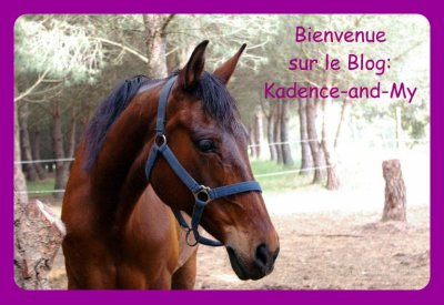 ~~Bienvenue sur le Blog : Kadence-and-My .~~