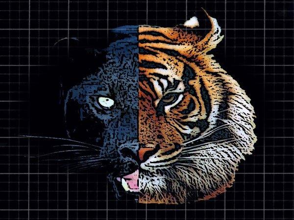 mi - panthere noire  et mi - tigre