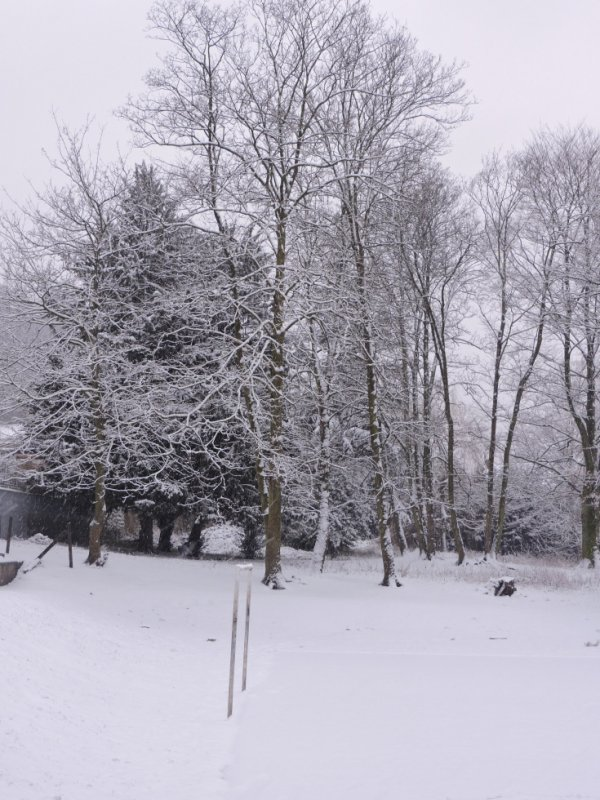 sais beau la neige de février 2018
