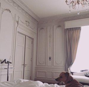 News Ariana à Paris