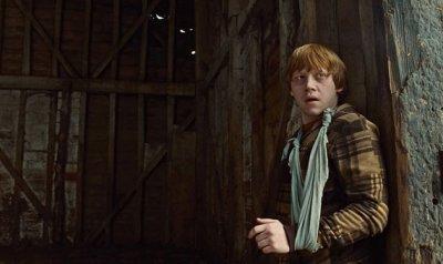 Présentation (Ron)