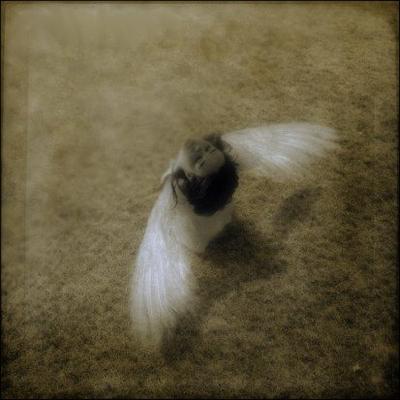 (8)Puisqu'on vit dans les creux d'un rêve...Il faudra leur dire (8)