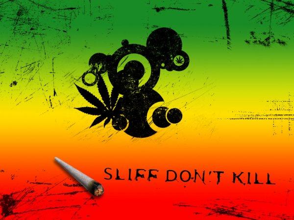 """Parce que dans le monde du """"rap"""" le """"reggae aussi trouve sa place !"""
