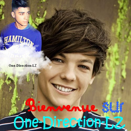 Bienvenue sur : One Direction LZ .