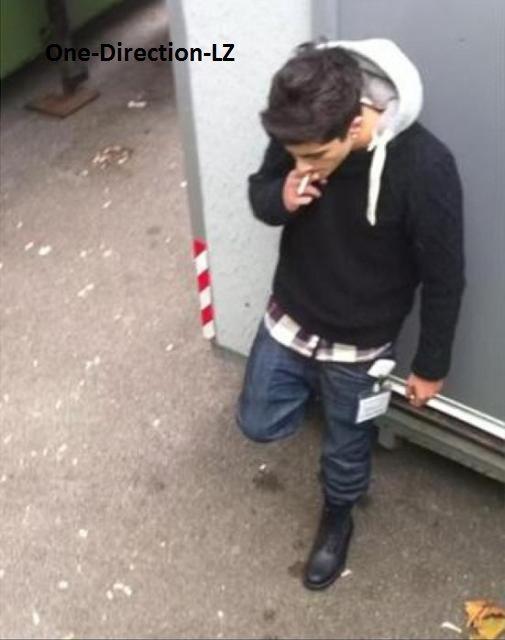 One Direction LZ ( Zayn fumant :/ )
