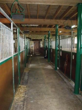 écuries chevaux