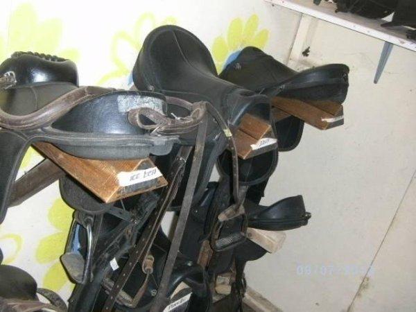 sellerie des poneys