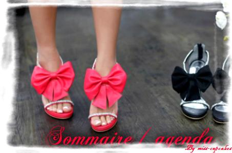 Sommaire / agenda