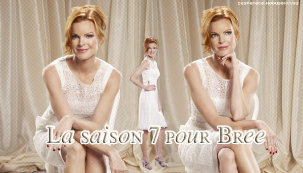 . Desperate Housewives . Spécial Bree