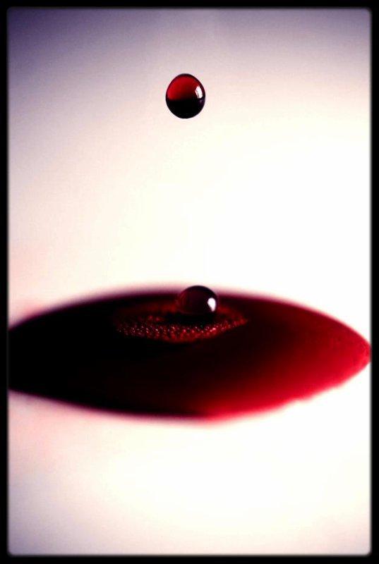le sang attire le sang