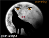 Loup-Garou-et-Vampire
