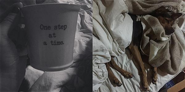 .  25.09.2015 |  Ashley partage souvent des photos avec nous sur Instagram et ce, dés le matin !  + Elle partage avec nous son café du matin puis une photo toute mignonne du chien de Paul. Il est pas chou sérieux ?  .