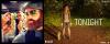 .  18 & 19.04.2017 |  La promo avec Ashley pour la série Rogue continue ! Avec grand plaisir, Harrison Sweeney nous a posté une photo sur Instagram de sa virée en voiture avec les deux acolytes Ashley et Joseph. L'entreprise avec laquelle ils l'ont fait se nomme Tesloop et son but est de faire voyager des gens en Tesla. Miss Greene est super souriante et c'est génial ça! Ensuite, découvrez un nouveau cliché promo avec la belle dans son rôle de Mia pour Rogue. Je ne suis pas particulièrement fan de ce cliché et vous ? :)   .