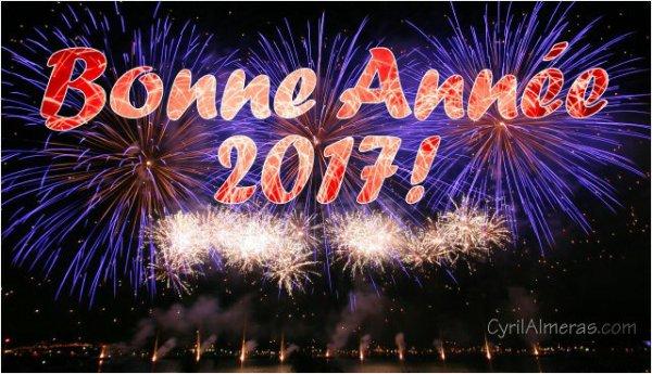 JE SOUHAITE UNE TRÈS JOYEUSE ANNÉE  A TOUS MES AMIES ET AMIS 2017 QU 'ELLE VOUS APPORTENT JOIES ET AMOUR ET SURTOUT SANTE