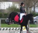 Photo de Centre-Equestre