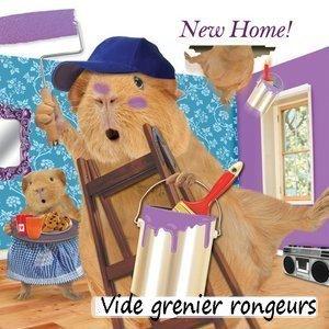 Vide grenier pour rongeurs ,sur facebook (lien en dessous de l'image )