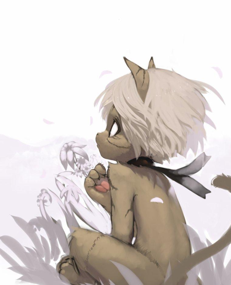 Moeki le furry de la plaine aux paquerettes