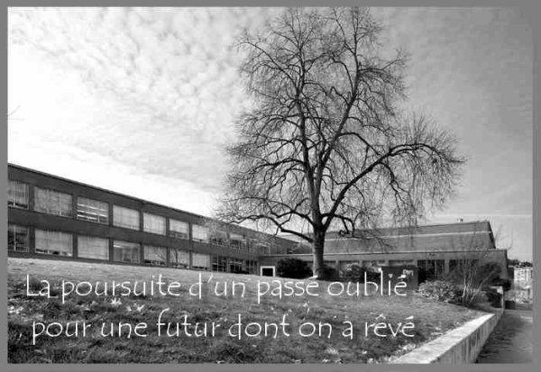 La Poursuite D'un passé Oublié Pour Un Futur Dont On A Rêvé