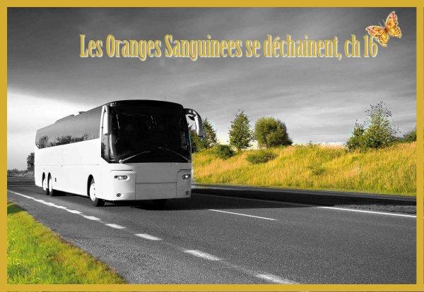 Les Oranges Sanguines se déchainent, chapitre 16