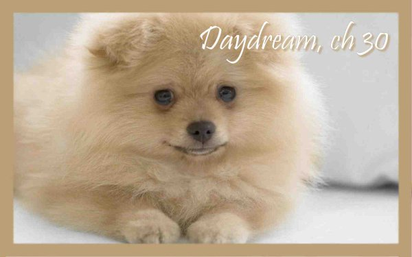 Daydream, Chapitre 30