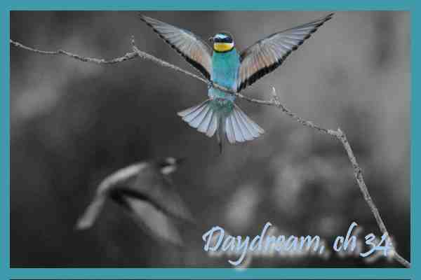 Daydream, Chapitre 34