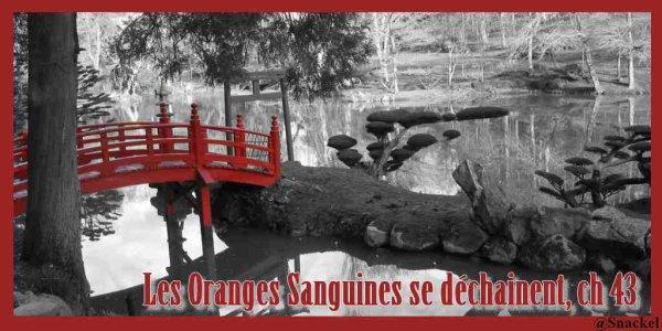 Les Oranges Sanguines se déchainent, chapitre 43