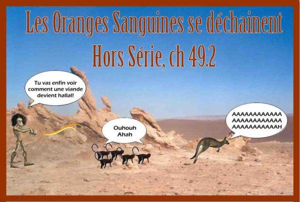 Les Oranges Sanguines se déchainent, Hors Série chapitre 49.2