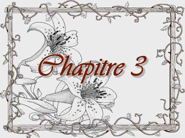 The Servant and The Princes, chapitre 3