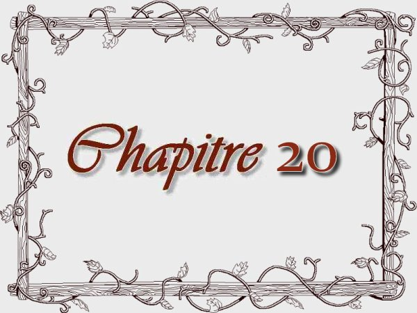 The Servant and The Princes, chapitre 20 FIN