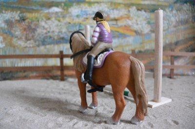 Le poney parfait