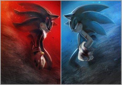 Chapitre 3 : Sonic n'a jamais eu de chance avec les nouveaux