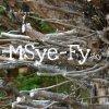 MSye-Fy