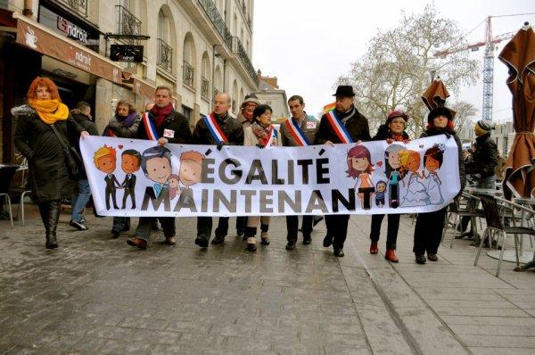 """Manif en faveur du """"Mariage pour Tous"""" à Nantes le 19 janvier 2013"""