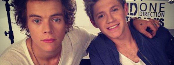 Harry Styles et Niall Horan . Ne sont pas t-ils sublime ?