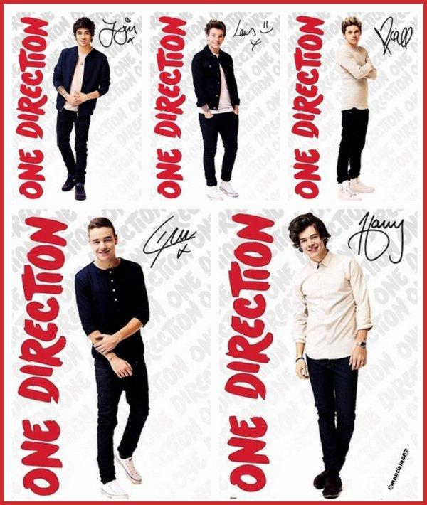 Les One Direction vont'ils bientôt se séparés ?