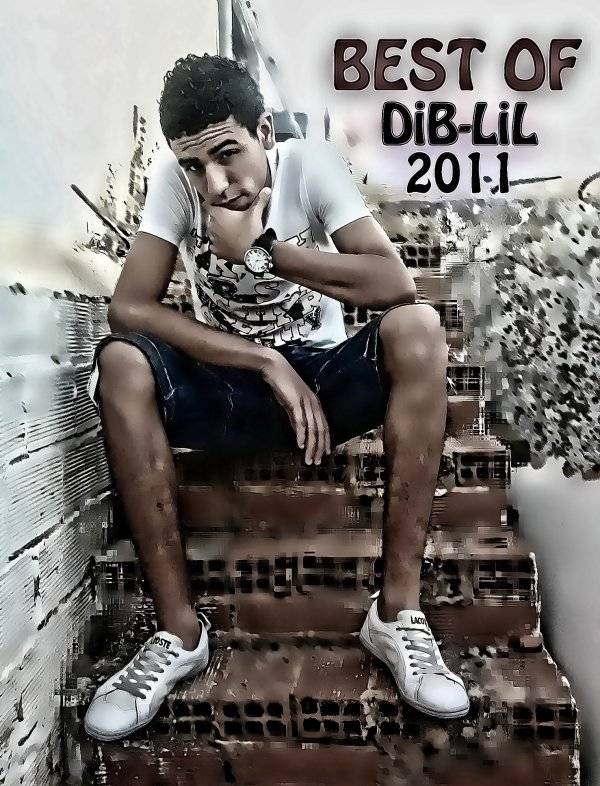 ***************************** BesT of DiB-LiL 2011*************************