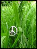 Photo de x-peace-666-x