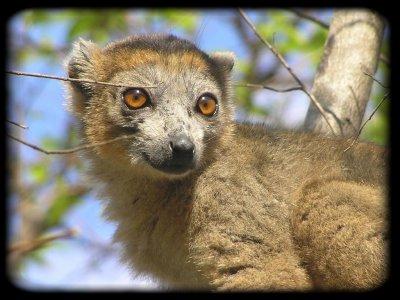 ★★★...L'ile Paradisiaque De Madagascar...★★★