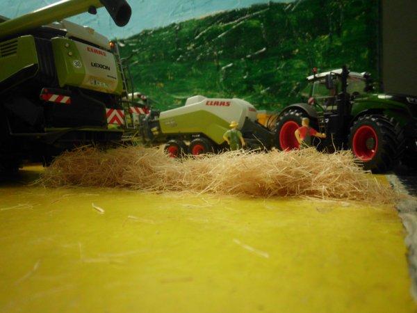 moisson avec l entreprise agricole marschalle