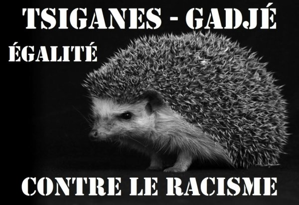 tous solidaire