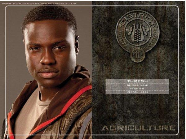 District 11 : L'agriculture, comme les fruits, les légumes et les arbres décoratifs.