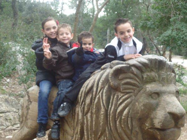 ns o zoo
