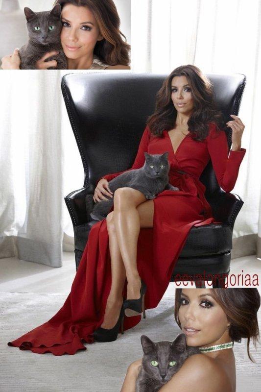 Photoshoot le 8 mai 2012... Eva Longoria égérie de pâtés pour chats.