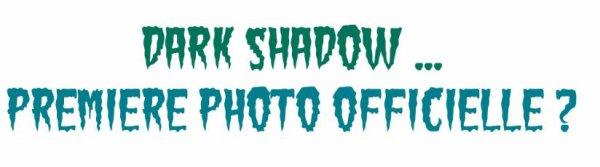 Premier cliché officiel de Dark Shadow !