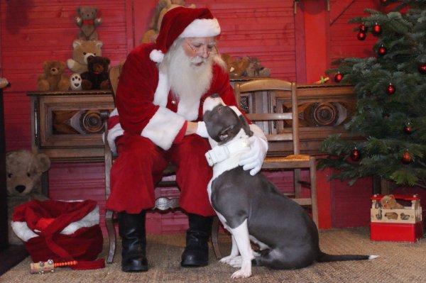 Loca & le Père Noël