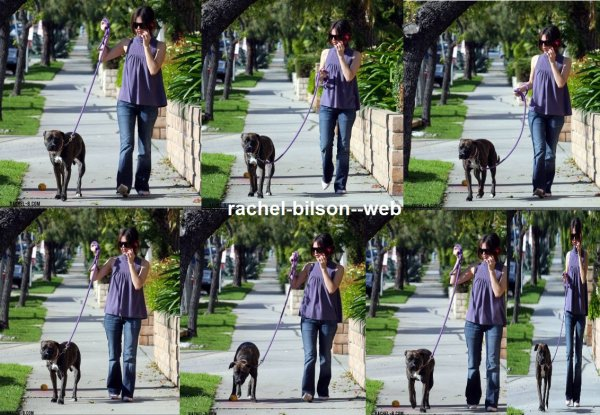 new de rachel avec son chien à los angeles - 2006